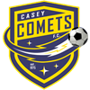 Casey Comets Large Sports Umbrella